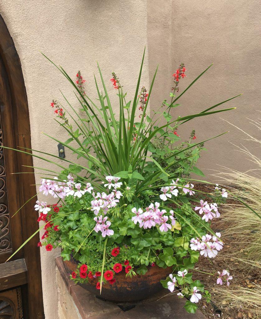 Entry planting pot