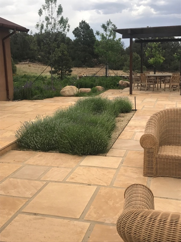 Flagstone with lavender