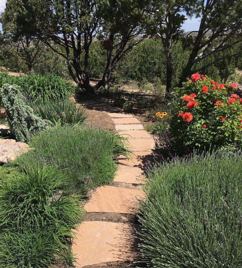 Stepping stone path through garden